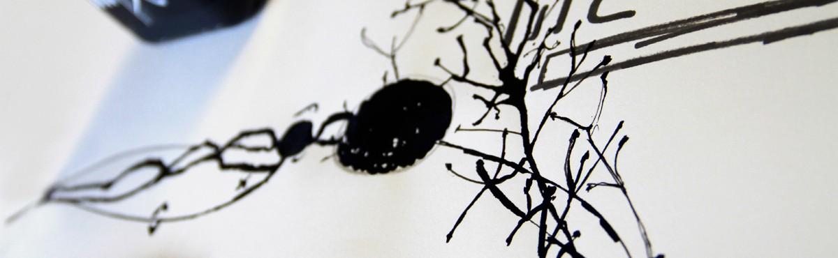 Osmoze - Atelier d'Art Mural > dessin encre de chine Franck Blériot