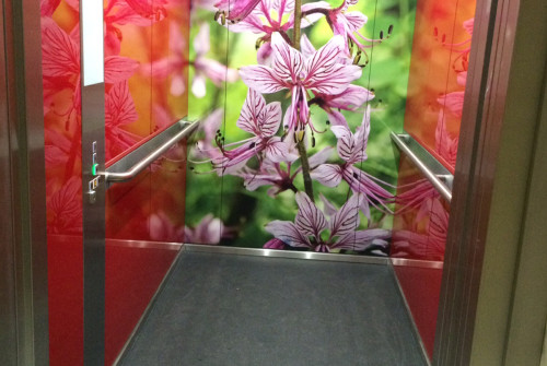 Art Mural > Décoration et Signalétique > Mur > Ehpad > Ascenseur