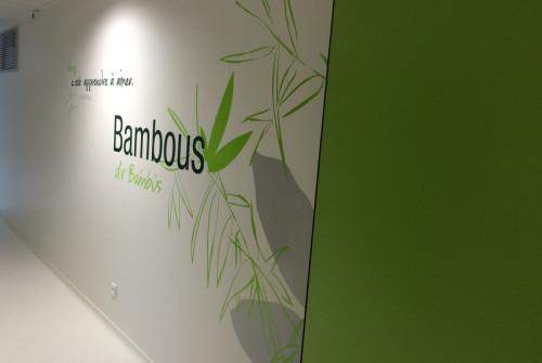 Art Mural > Décoration et Signalétique > Mur > Ehpad > Design mural bambou