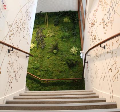 Décoration Murale Architecturale > Groupe Vinci > Art Végétal > Cage Escalier