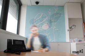 Décoration Murale > Art Mural > Espace Test > Paris