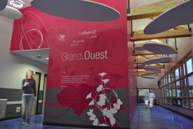 Osmoze - Atelier d'Art mural > signalétique artistique et contemporaine, scénographie et design d'espace