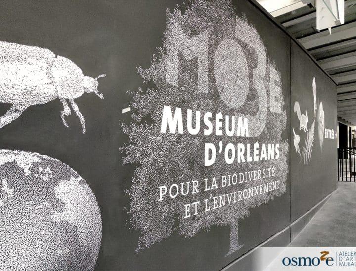 Signalétique artistique - Musée d'Orélans - Osmoze